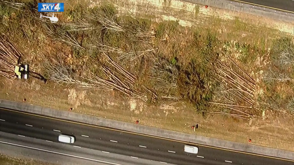 Georgia DOT cutting down trees to make Interstate 95 safer