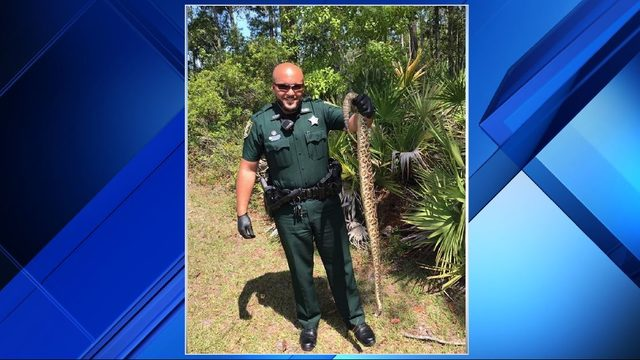 Huge snake found near St. Johns County pond
