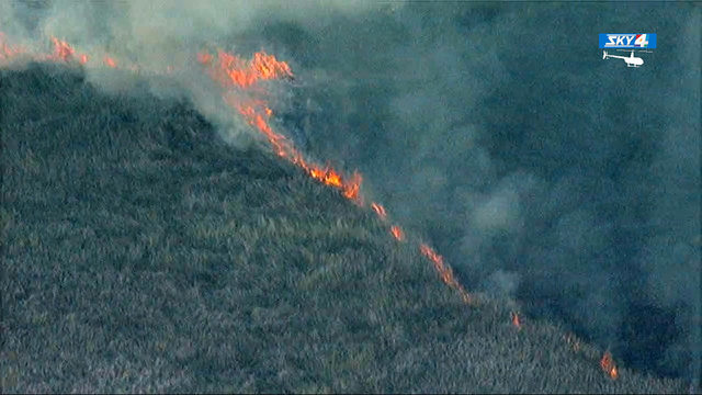 150-acre Yellow Bluff wildfire burning near I-95