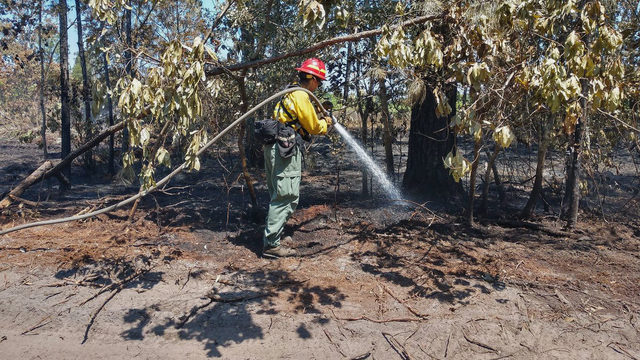 Firefighters gain ground against 600-acre wildfire