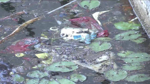 Unity Plaza in Brooklyn neighborhood abandoned, littered with trash