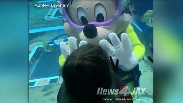 Mickey takes a dive at Disney to entertain parkgoers