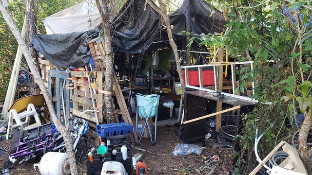 City investigating homeless camp near Mayport