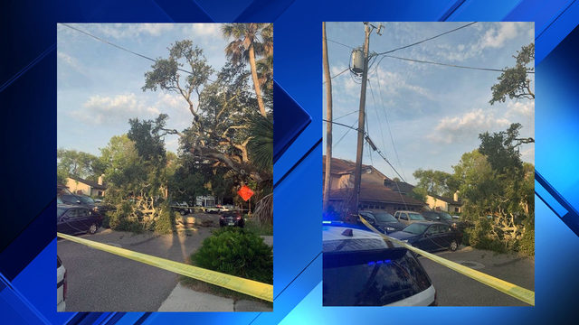 Tree, power lines down on Fourth Street in Atlantic Beach