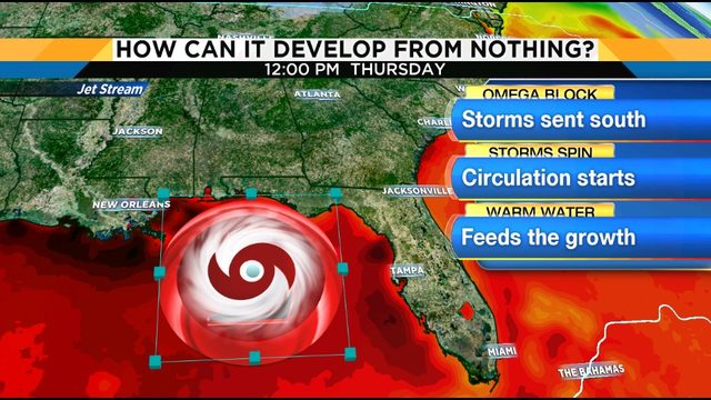 Storm could bring heavy rain, flooding to Florida's Gulf Coast
