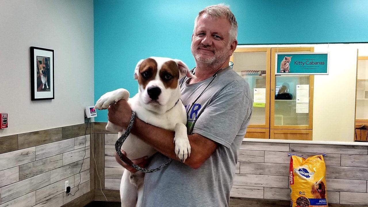 Florida Urgent Rescue evacuates pets before Barry makes landfall