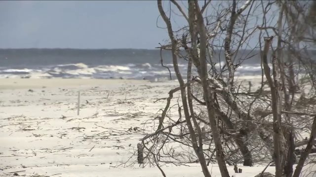 Report lists St  Simons & Jekyll beaches among filthiest in