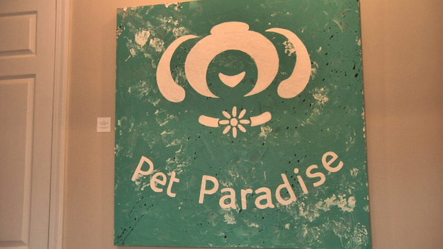 New Pet Paradise vet clinic features art by special education students