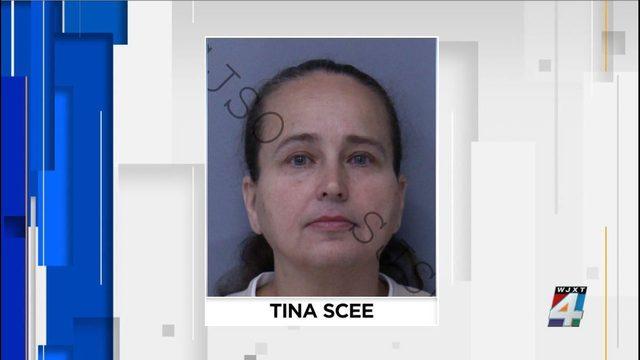 Interlachen woman charged with illegal adoption scheme